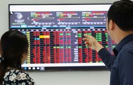 Chứng khoán đỏ lửa, VN-Index giảm mạnh nhất một tháng
