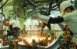 Doanh nghiệp FDI kỳ vọng tiếp tục mở rộng đầu tư tại Việt Nam