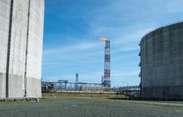 Nhật Bản, Nga hợp tác sản xuất hydro, amoniac để chống biến đổi khí hậu