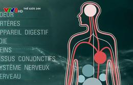 Pháp: F0 tự điều trị ở nhà