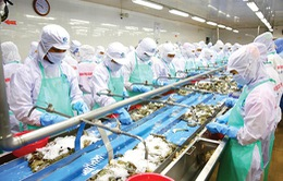 Xuất khẩu thủy sản dự báo tiếp tục giảm trong tháng 9