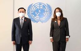 Tăng cường quan hệ hợp tác Liên Hợp Quốc - Việt Nam