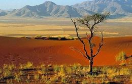 Khám phá sa mạc bị lãng quên Namibia
