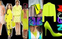 Trẻ trung và nổi bật với gam màu neon