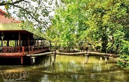 Du lịch miền sông nước hấp dẫn tại Châu Thành, Bến Tre