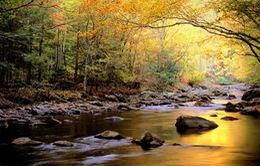 """Thăm những vườn quốc gia """"ăn khách"""" nhất nước Mỹ"""