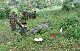 THTT: Chung tay khắc phục hậu quả bom mìn (20h30, 13/3, VTV1)