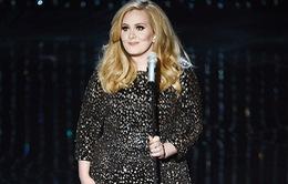 Adele sẽ hát mừng sinh nhật phu nhân Tổng thống Mỹ