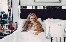 Paris Hilton mất niềm tin vào đàn ông