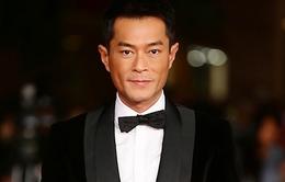 Cổ Thiên Lạc - diễn viên kiếm tiền giỏi nhất Hong Kong năm 2013