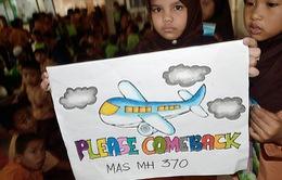 Thêm giả thiết mới về chiếc máy bay mất tích MH370