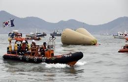 Chìm phà Sewol: Thêm nhiều thi thể đã được tìm thấy