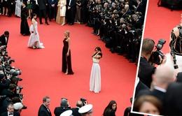 LHP Cannes 2014: Các ngôi sao tỏa sáng trên thảm đỏ