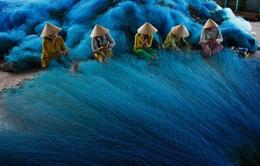 Dệt lưới đánh cá vào top 10 ảnh môi trường của Anh