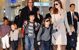 Cả nhà Jolie-Pitt sẽ cùng nhau đóng phim