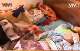 Sinh con từ tinh trùng người chồng đã khuất: Quyết định táo bạo của người vợ trẻ