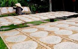 Làng nghề bánh tráng Quảng Nam vào Tết