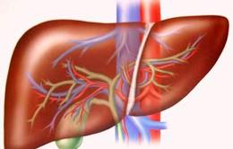 Kỹ thuật can thiệp nội mạch điều trị u gan