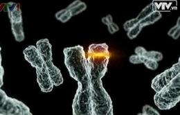Tìm hiểu về thành công xây dựng hệ gene một người Việt