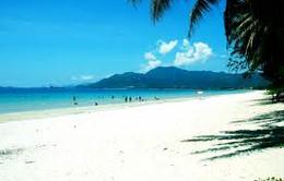 Đông đảo du khách đặt tour dịp Tết Nguyên đán
