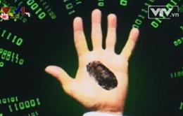 Gia tăng tội phạm giao dịch trực tuyến