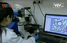 Trung Quốc: Thử nghiệm loại vaccine ngừa cúm H7N9