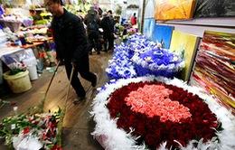 """Trung Quốc: Ngày Valentine tràn ngập với """"biển hoa"""""""