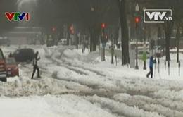 Thủ đô Washington ngập chìm trong băng giá