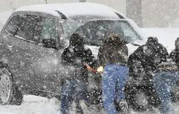 20 người thiệt mạng do bão tuyết tại Mỹ