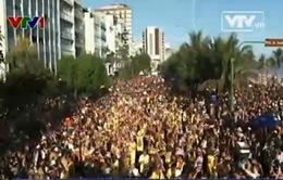 Brazil tổ chức Lễ hội đường phố hướng tới carnival Rio