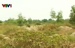 TP HCM: Người dân đòi đất từ quy hoạch treo
