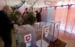 Crimea: Công tác chuẩn bị cho cuộc trưng cầu dân ý hoàn tất