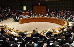 Nga phủ quyết Nghị quyết của Hội đồng bảo an LHQ về Crimea