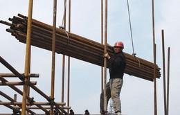 Con số thống kê tai nạn lao động hàng năm có chính xác?