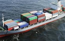 Tàu thủy va chạm ở vịnh Tokyo, 8 người mất tích