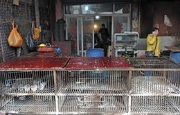 Trung Quốc: Thêm 3 trường hợp nhiễm cúm H7N9