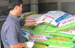 Phú Yên: Tạm giữ 35 tấn phân bón nghi giả