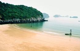 Hải Phòng: Nỗ lực bảo vệ môi trường danh thắng Cát Bà