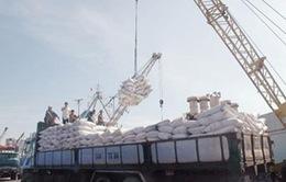 Doanh nghiệp xin trả chỉ tiêu xuất khẩu gạo