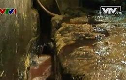 Ngạt thở vì ô nhiễm tại làng mổ trâu, bò Phúc Lâm