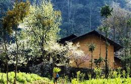 Hà Giang phát triển du lịch cộng đồng tại làng bản