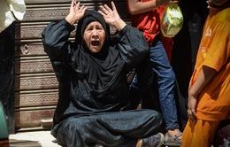 Viện Công tố Ai Cập kháng cáo tử hình 183 người