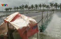 Đưa nước mặn vào vùng ngọt hóa để nuôi tôm: Lợi bất cập hại!