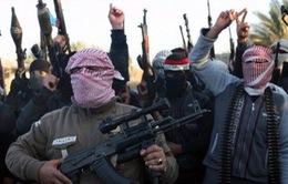 Iraq: Phiến quân chiếm giữ thêm nhiều thị trấn