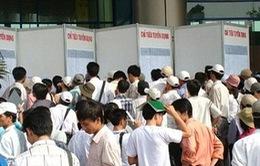 Hơn 162.000 người có trình độ đại học thất nghiệp