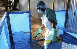Cảnh báo dịch Ebola có thể vào Việt Nam qua đường du lịch