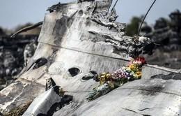 Mỹ cử nhóm chuyên gia tới Ukraine hỗ trợ điều tra vụ máy bay MH17