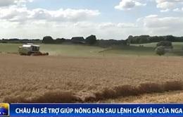 Châu Âu sẽ trợ giúp nông dân sau lệnh cấm vận của Nga