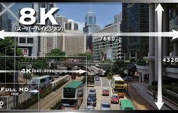 Đài NHK giới thiệu công nghệ truyền hình siêu nét 8K tới khán giả Việt