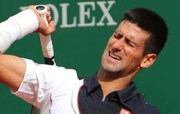 Novak Djokovic dính chấn thương trước thềm Wimbledon 2014